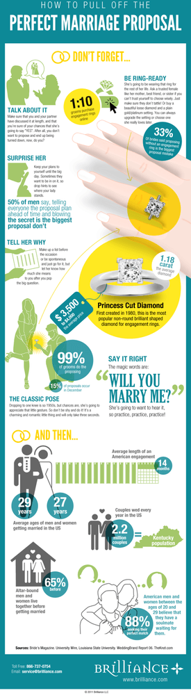Marriage Proposal Guide Infographic