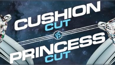 cuision.vs_.princess