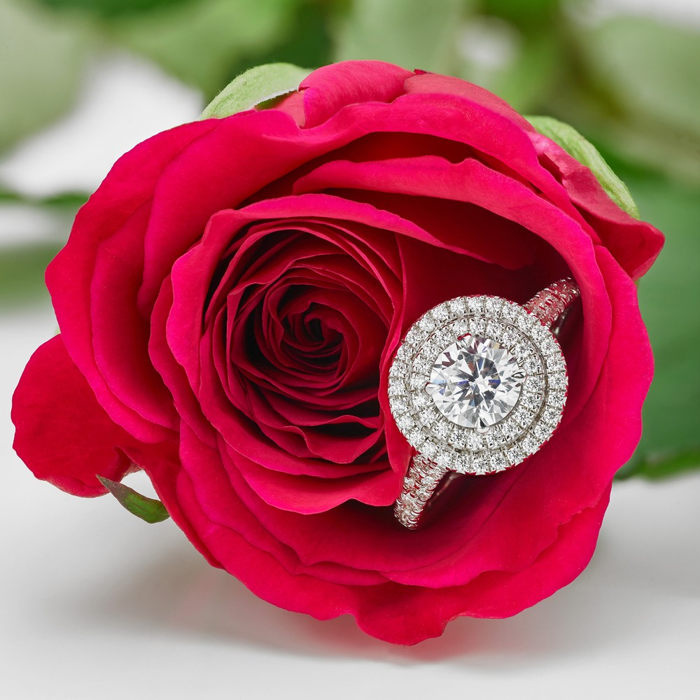 diamond-ring-with-double-halo-setting-lying-within-a-red-rose